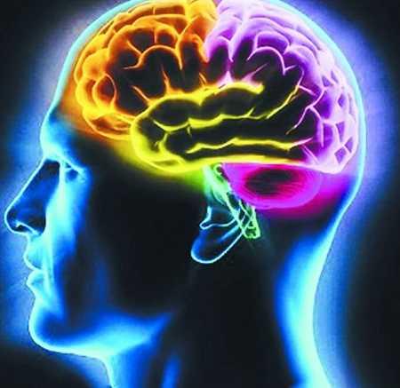 生活中导致癫痫病形成的因素有哪些